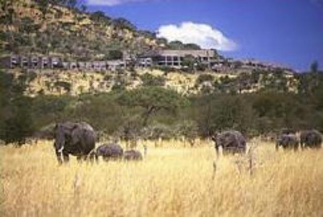 Хотел Serengeti Sopa Lodge - Серенгети 4•